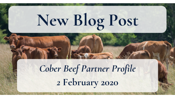 Blog Cober Profile