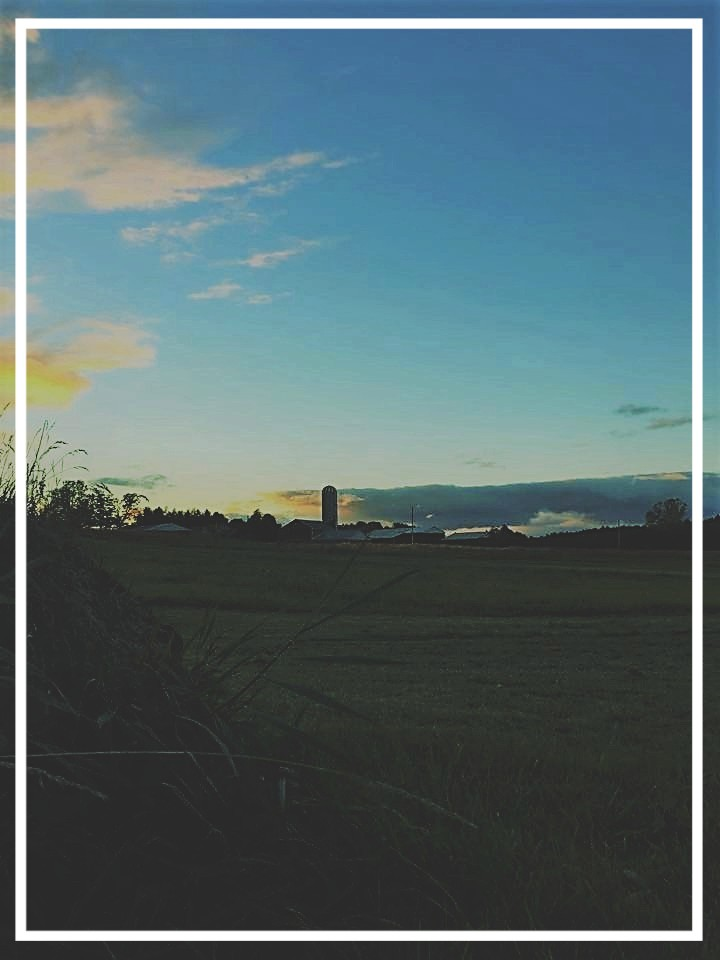 FARM silo sunset_copy_3